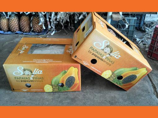 Sofia Papayas & Piñas Boxes
