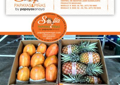 Sofia Papayas & Piñas Labels